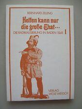 Helfen kann nur die große That ... Radikalisierung in Baden 1848
