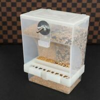 Chicken Bird Feeder Automatic Poultry Feeding Food Container Splashproof Storage