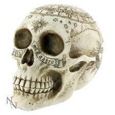 Astrological Skull wiccan pagan goth fantasy steampunk witch