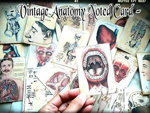 50 Medicines vintage heart Junk journal gifts for Doctor Medical Student Nurse