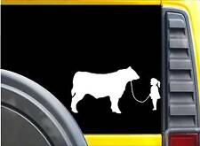 Girl walking Bull Sticker k629 6 inch cattle decal