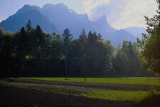 439054 Swiss agricultor trabajan sus campos A4 Foto Impresión
