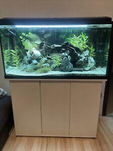 aquarium komplett mit unterschrank gebraucht