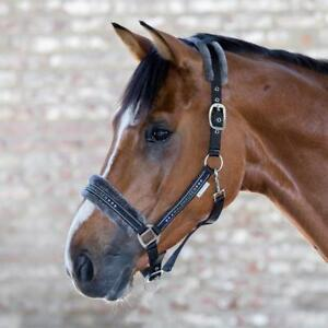 unterlegt mit Kunstfell Pony mintgr/ün Halfter einfarbig