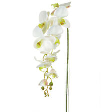 Orchid Phalaenopsis Artificial Silk Trailing 98cm White