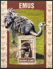 SOLOMON ISLANDS 2016 EMUS  SOUVENIR SHEET MINT  NEVER HINGED