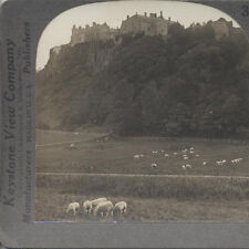 STEREOVIEW OF HISTORIC STERLING CASTLE   MANY SHEEP - SCOTLAND