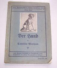 Der Hund von Camillo Morgan um 1910 Hunde dogs !