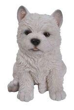West Highland/Westie Cachorro Mascota PAL por Vivid Arts
