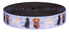 Country Brook Design® 1 Inch Labrador Retriever on Black Nylon Webbing, 20 Yards