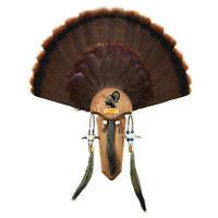 02 Taxidermists Woodshop The Medium Oak Carved Turkey Mounting Kit with Beard Plate