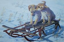 Amy Brackenbury, SLED DOGS, Yellow Labrador Puppies, S/N Print