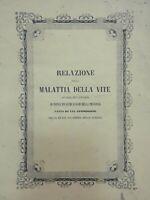 1852 - Viticoltura - Agronomia - Napoli - Gaetano Nobile - Tavole fuori testo