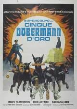 THE DOBERMAN GANG Movie POSTER 27x40 Italian B Byron Mabe Hal Reed Julie Parrish