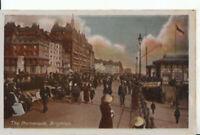 Sussex Postcard - The Promenade - Brighton - Ref 10344A