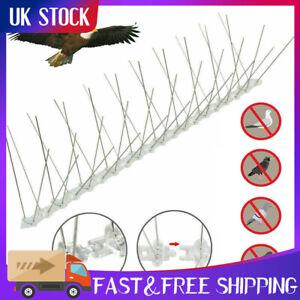 Bird Pigeon stainless steel Spikes Deterrent Anti Birds Control Repeller NarrowA