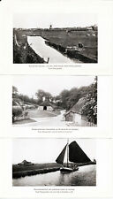 Nordsee-Bäder 1912 orig. Reise-Kapitel (38 S.!) Kleidung Hygiene Marschen Geest