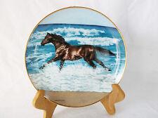 """Wave Racer"" Danbury Mint Horse 8"" Plate-23k Free Spirits by Lesley Harrison"