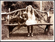 Flat Coated Retriever Girl And Dog On A Rustic Seat Lovely Print Poster