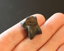 Fossil Giant Armadillo medial phalanx toe Holmesina septentrionalis Florida
