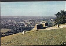 Surrey Postcard - The Viewpoint, Box Hill    A8117