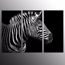 FRAMED 3 Panel Animal Canvas Wall Painting Zebra Photo Giclee Canvas Art Print