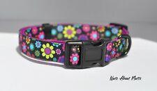 Daisy Flowers dog collar, lead, harness small, medium, large FREE POSTAGE!