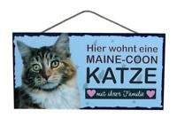 Maine Coon Katze Holzschild Türschild Tierschild Cat Wood Sign 25 cm