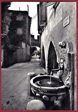 TREVISO ASOLO 19 FONTANA - PORTA LOREGGIA Cartolina FOTOGRAFICA