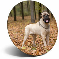 Bullmastiff Rules Waterproof Bumper Sticker Magnet NIP