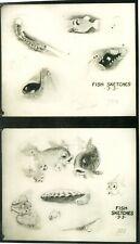 Pinocchio Fish Sketches Walt Disney production animation model sheet 1930s
