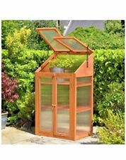 2 Door Small Wooden Transparent Greenhouse/ Growhouse Poly-carbonated glazing
