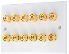 White 6.0 Audio AV Speaker Wall Face Plate Gold 12 Binding Posts