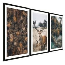 Set Of 3 Animal Pictures Black Frame A3 Ready To Hang Forest Wood Wall Art