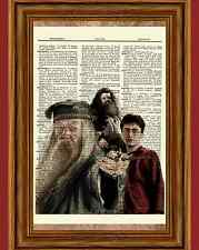 Harry Potter Dictionary Art Picture Poster Hagrid Dumbledore Daniel Radcliffe