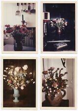 PHOTO ANCIENNE Lot 4 photos Couleur Nature Morte Bouquet de fleurs 1964 Anémone
