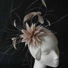 Almond Feather Fascinator for Races , Weddings , And Proms