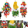 Parrot Cage Bird Bite Toys Cockatoos Macaws Rope Wooden Chewing Big Toy Hang