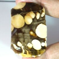 Best Offer Price Peanut Wood Jasper Rock Rough Slab Specimen Designer JG110102