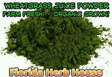 Farm Fresh Wheatgrass Juice Powder - 16 oz (1 lb) - Organic Wheatgrass Juice