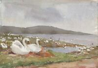 SWANS AT ABBOTSBURY DORSET Antique Watercolour Painting 1925 IMPRESSIONIST