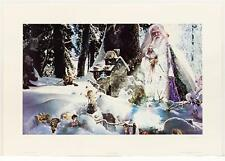 Vintage TOM CROSS Fairies Magical Fantasy Wizards off set Lithograph SIGNED #71