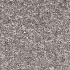 Associated Weavers Invictus Dorado Mist Grey Soft Carpet Remnant 5.60m x 4m