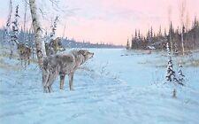 Jon Van Zyle -  Wilderness Nexus  - Limited Edition Print  of 250