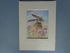 """HARE & DAISIES"" A beautiful Watercolour Painting by Artist Sandra Mason"