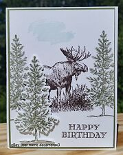 BIRTHDAY HANDMADE CARD KIT, STAMPIN UP WALK IN THE WILD, MOOSE, LOVELY AS A TREE