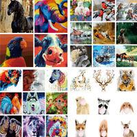 Malen nach Zahlen Kit Erwachsene DIY Öl Zeichnen Tier Handbemalt Bunt Leinwand