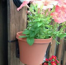 3 Flower Pots and 3 Hangers - Hang with No Screws or Tools! - WhereverGarden