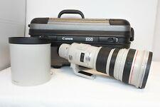 Canon EF 500mm f/4 L IS USM Lens