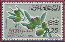 1970 MAROC N°604** Olivier , 1970 MOROCCO Olive tree MNH